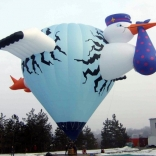 Balloon s/n 733