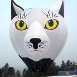 Balloon s/n x1291